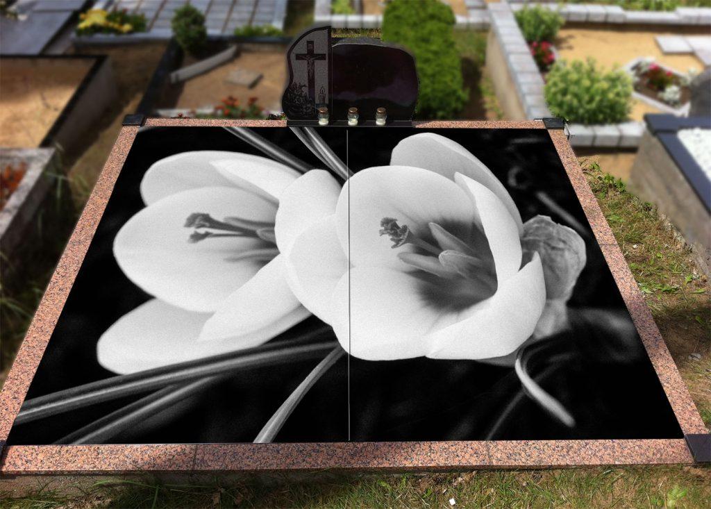 Gėlės 043