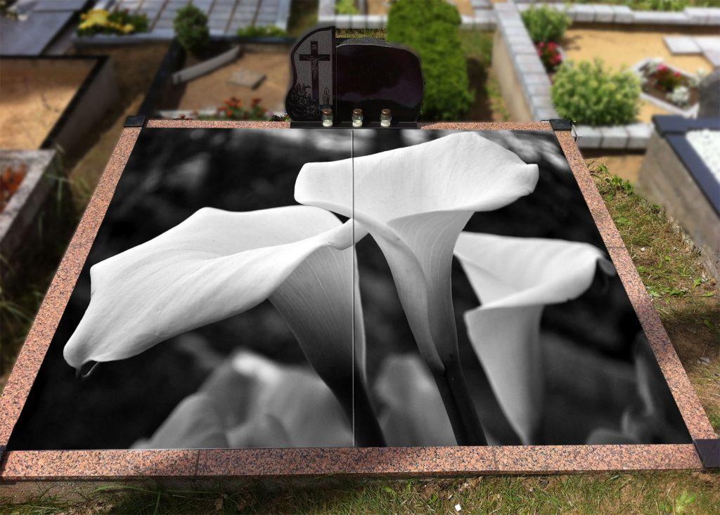 Gėlės 049